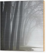 Misty Moments Wood Print