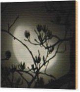 Misty Moon Wood Print