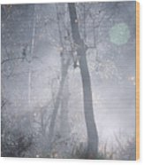 Misty Morning - Ojai California Wood Print