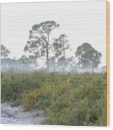 Misty Morning On The Trail Wood Print