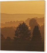 Misty Mountain Sunrise Mirror Image Wood Print