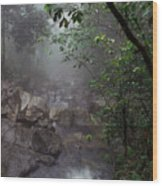 Misty Rainforest El Yunque Mirror Image Wood Print