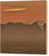 Misty Ranch Wood Print