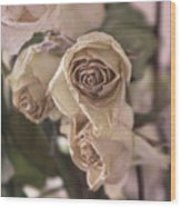 Misty Rose Tinted Dried Roses Wood Print