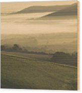Misty South Downs Wood Print