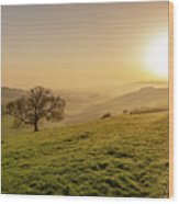 Misty South Downs Way Wood Print
