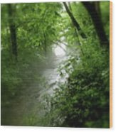 Misty Stream Wood Print by Tina Valvano
