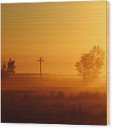 Misty Sunny Morning Wood Print