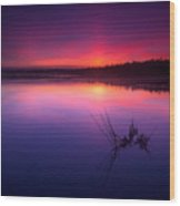 Misty Sunset At Singing Sands Beach Wood Print