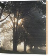 Misty Texas Morning Wood Print