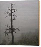 Misty Tree Wood Print
