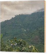 Misty Valley Near Cajamarca Colombia Wood Print