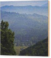 Misty Virginia Morning Wood Print by Teresa Mucha