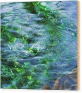 Misty Waters Wood Print by Terril Heilman