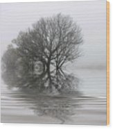 Misty Wetlands Wood Print