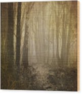 Misty Woodland Path Wood Print by Meirion Matthias
