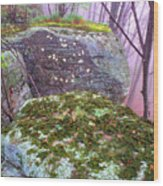 Misty Woodland Scenic Wood Print