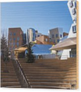Mit Stata Center Cambridge Ma Kendall Square M.i.t. Staircase Wood Print
