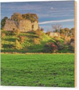 Mitford Castle Beside River Wansbeck Wood Print
