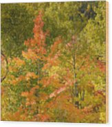 Mixed Autumn Wood Print