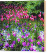 Mixed Flowers And Tulips Wood Print
