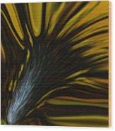 Mixed Sunflower Wood Print