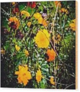 Mixture Of Flowers On Summer Day Wood Print