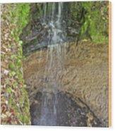 Mna Memorial Falls Wood Print