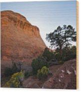 Moab 2 Wood Print