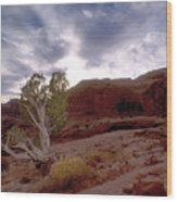 Moab Dreams Wood Print