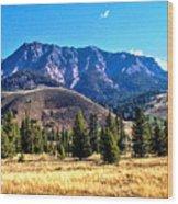 Moab Utah 1 Wood Print