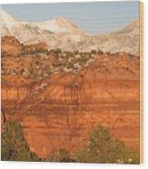 Moab Utah Wood Print