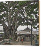 Moana Surfrider Banyan Court - Waikiki Beach Wood Print