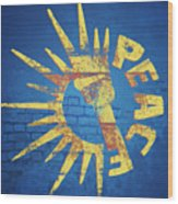Moar Peace Wood Print by Laura Brightwood