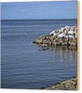 Mobile Bay 4 Wood Print