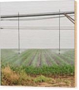 Mobile Irrigation Robot  Wood Print