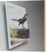 Mockingbird - Use Red-cyan 3d Glasses Wood Print