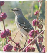 Mockingbird Heaven Wood Print
