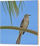 Mockingbird In A Palm Tree Wood Print