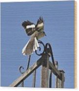 Mockingbird Landing On Fence Wood Print