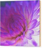 Mod Dahlia Wood Print by Kathy Yates