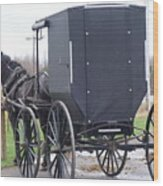 Modern Amish Horse And Buggy Wood Print