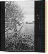 modern window looking out onto rural fields in the lake district Cumbria England UK Wood Print