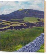 Moel Famau Hill Painting Wood Print
