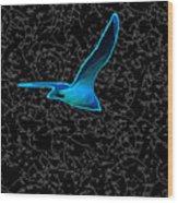 Moewe - Seagull Wood Print