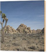 Mohave Desert Wood Print