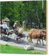 Mohonk Carriage Tour Wood Print