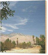 Mojave Wood Print