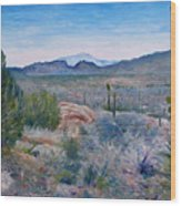 Mojave Desert With Mt San Jacinto California Usa 2001   Wood Print