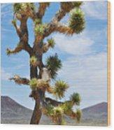 Mojave Joshua Tree Wood Print